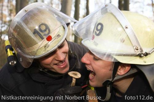 20111119-Nistkasten-054