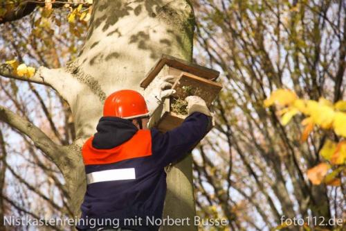 20111119-Nistkasten-110